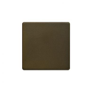 Bronze Blank Plate