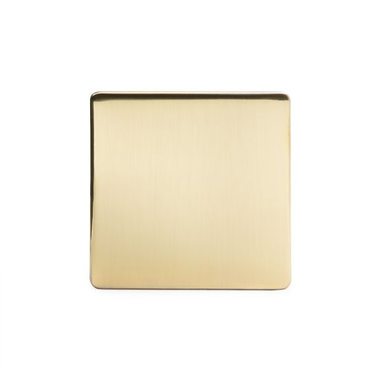 The Savoy Collection Brushed Brass Period metal Single Blanking Plate